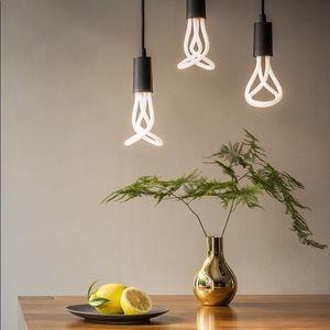 Brand NEW Plumen LED Lightbulbs